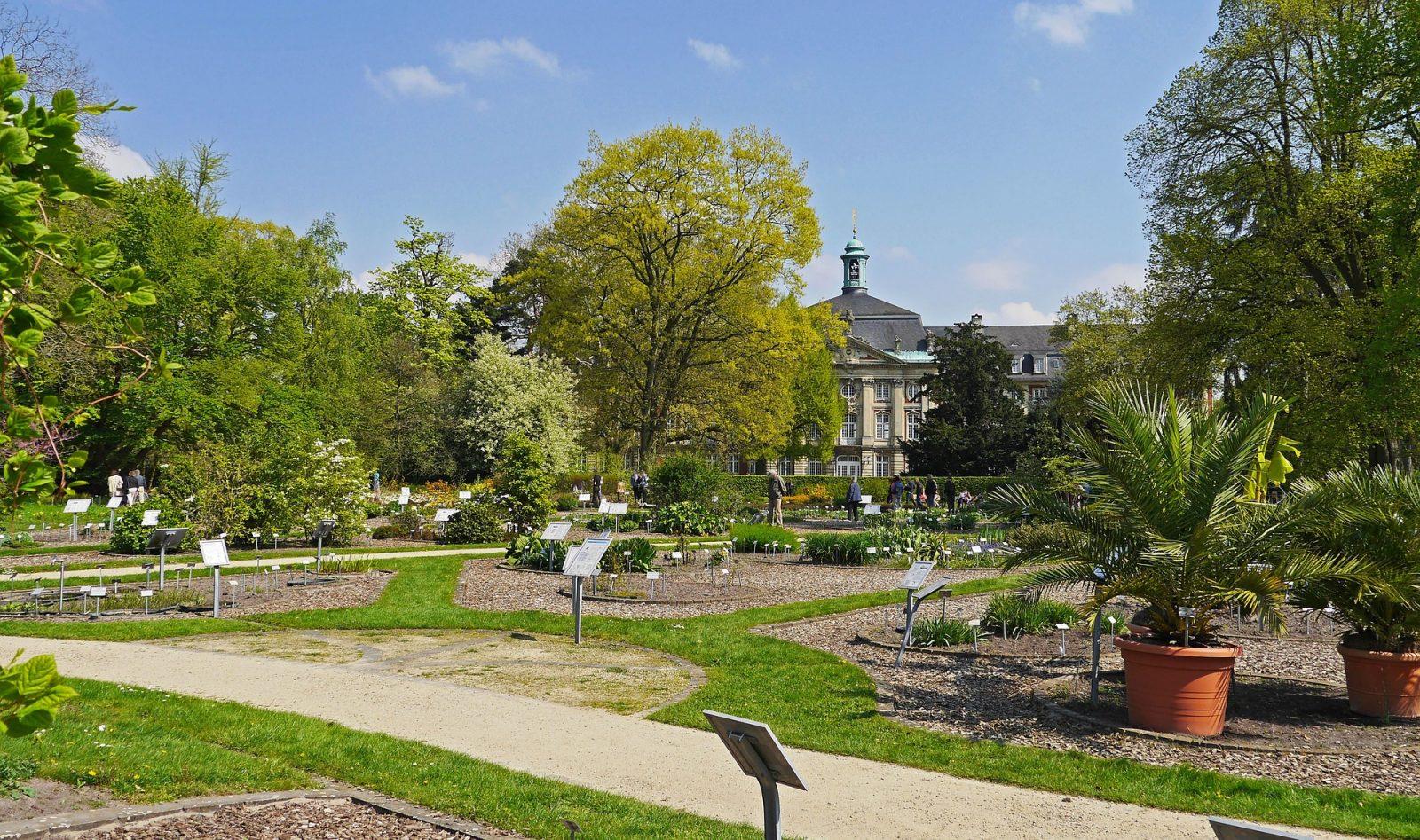 botanical garden munster